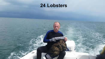 24 lobsters